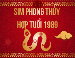 https://simphongthuy.vn/media/images/article/125/1989.jpg