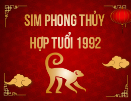 https://simphongthuy.vn/media/images/article/130/1992.jpg
