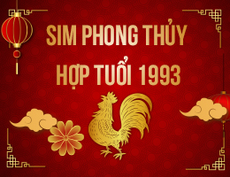 https://simphongthuy.vn/media/images/article/131/1993.jpg