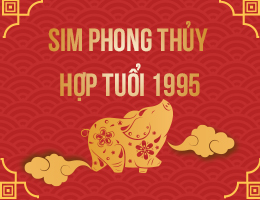 https://simphongthuy.vn/media/images/article/133/1995.jpg