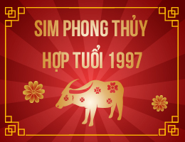 https://simphongthuy.vn/media/images/article/135/1997.jpg