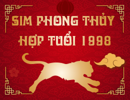 https://simphongthuy.vn/media/images/article/136/1998.jpg