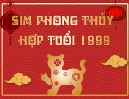 https://simphongthuy.vn/media/images/article/282/1999.jpg