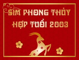 https://simphongthuy.vn/media/images/article/286/2003.jpg