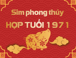 https://simphongthuy.vn/media/images/article/65/1971.jpg