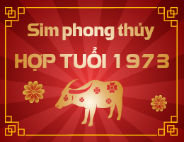 https://simphongthuy.vn/media/images/article/67/1973.jpg