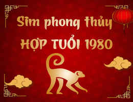 https://simphongthuy.vn/media/images/article/74/1980.jpg