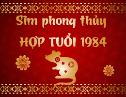 https://simphongthuy.vn/media/images/article/78/1984.jpg