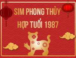 https://simphongthuy.vn/media/images/article/81/1987.jpg